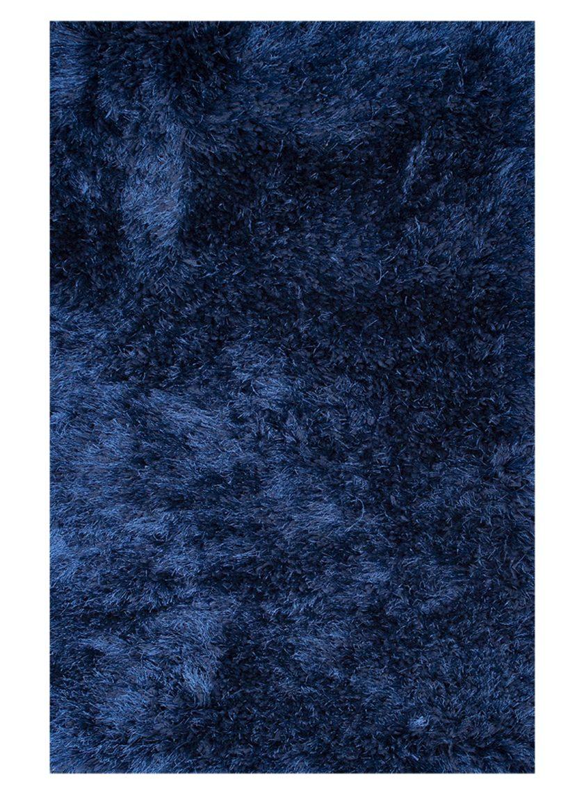 DIB__0182_Porshe Azul